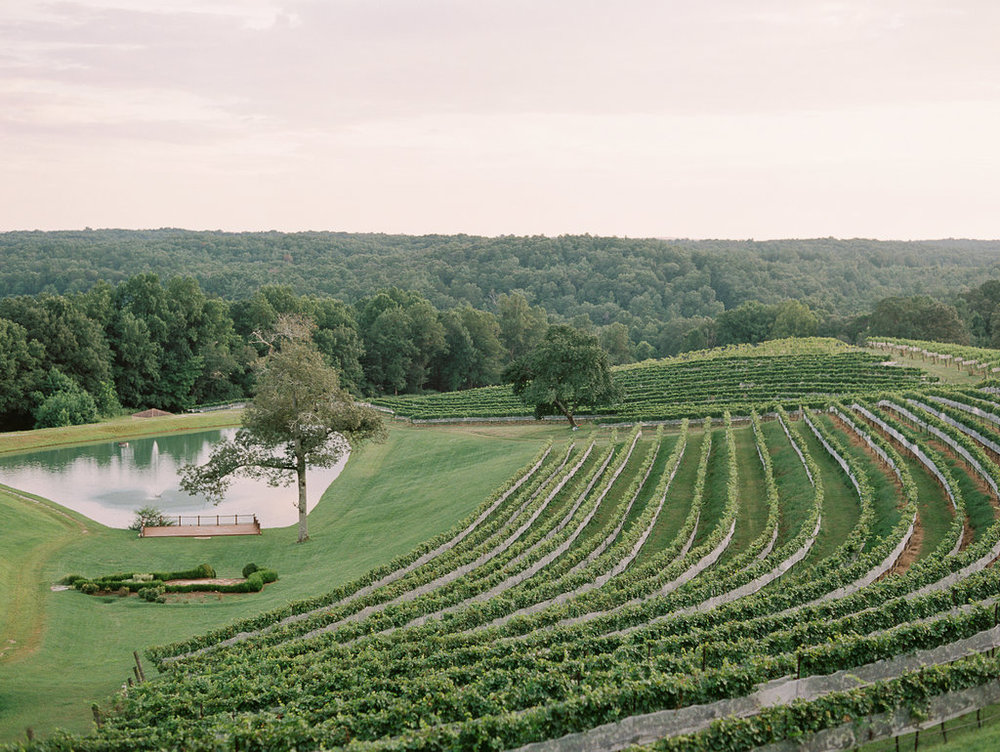 montaluce-winery-dahlonega-atlanta-wedding-photographer-fine-art-film-hannah-forsberg55.JPG