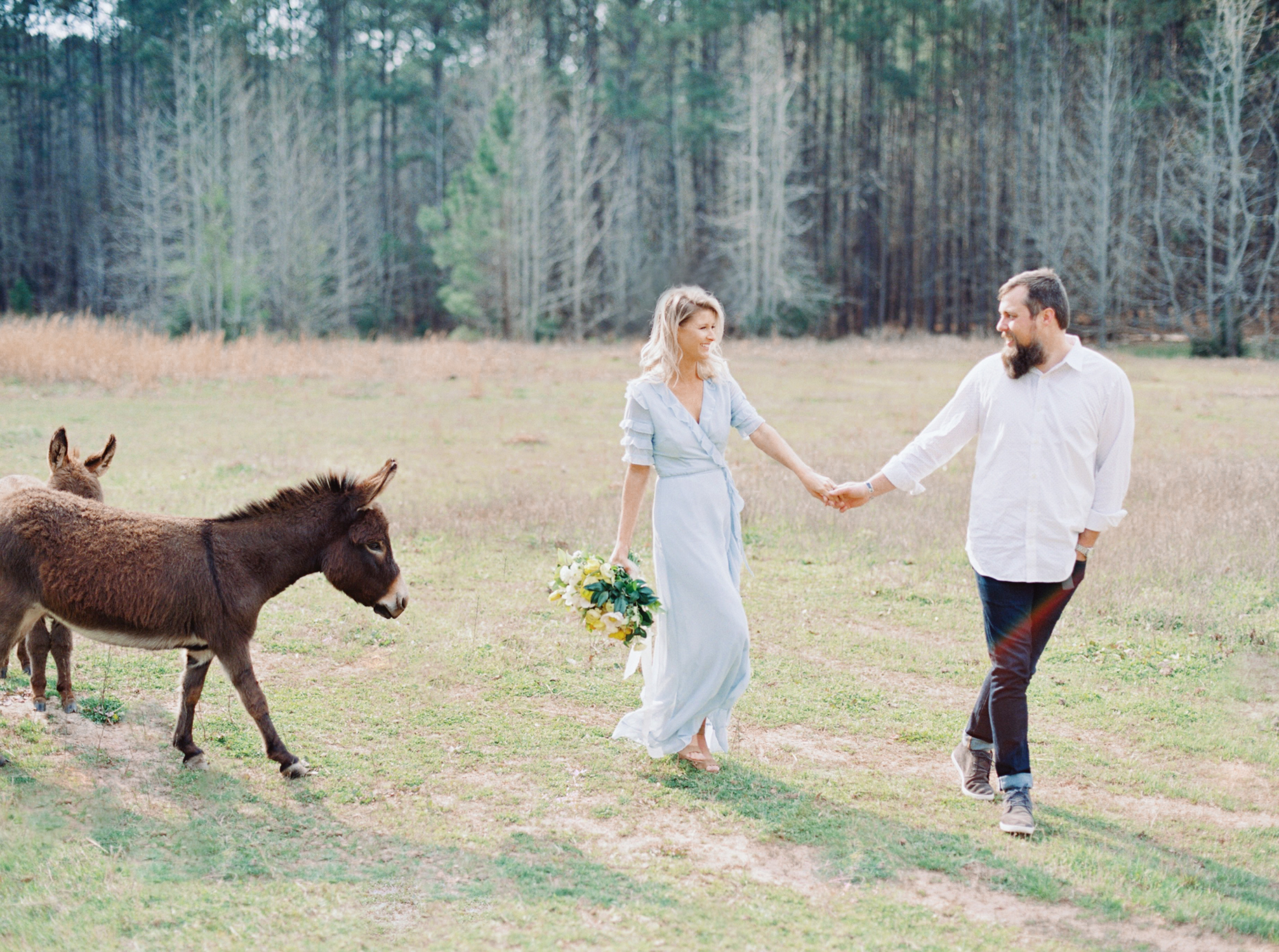 hannah forsberg atlanta wedding photographer whitney spence anniversary session with miniature donkeys and horse-12.jpg