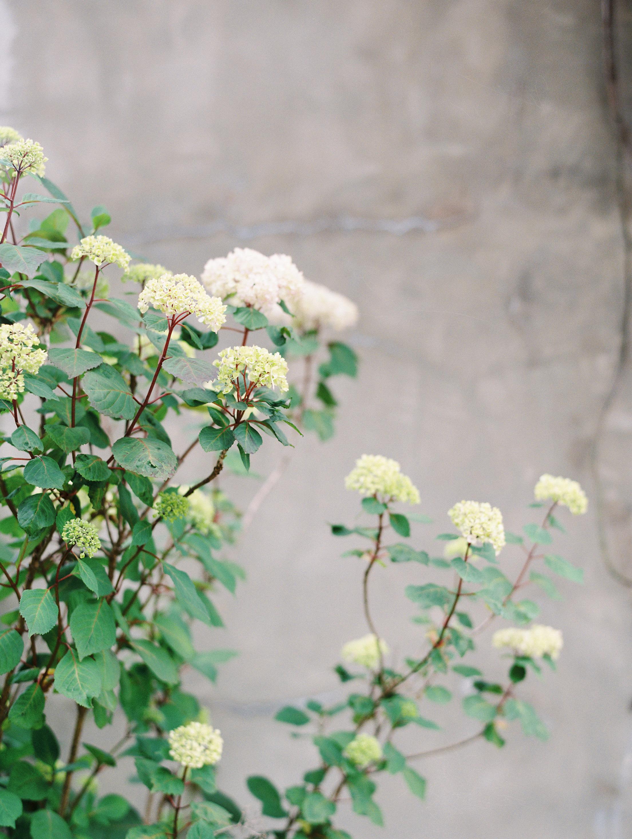 Romantic-Summerour-studio-wedding-hannah-forsberg-atlanta-wedding-photographer7.JPG
