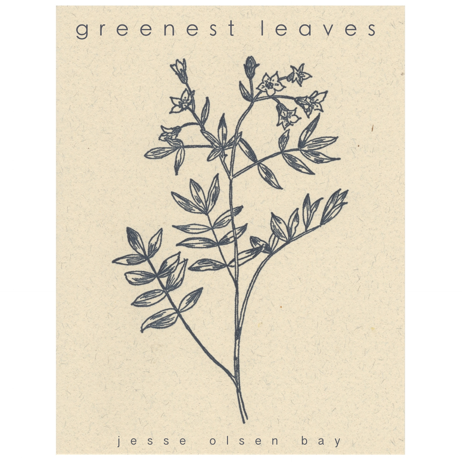 greenest leaves (2017)   Nine songs, written and slowly shaped over six years, and recorded in a single night in our old barn. Quiet, intimate songs, just a voice, a guitar, and a little help from the frogs and crickets. They are ruminations on life as a father, a partner, seeking beauty and solace in dreams, in the trees, in love, in grief, in the everyday.