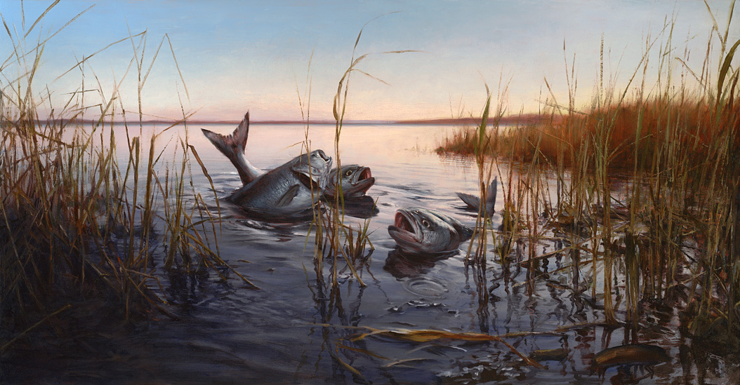 The Shallowers, 2010 oil on linen on aluminum panel, 25 x 48 inches