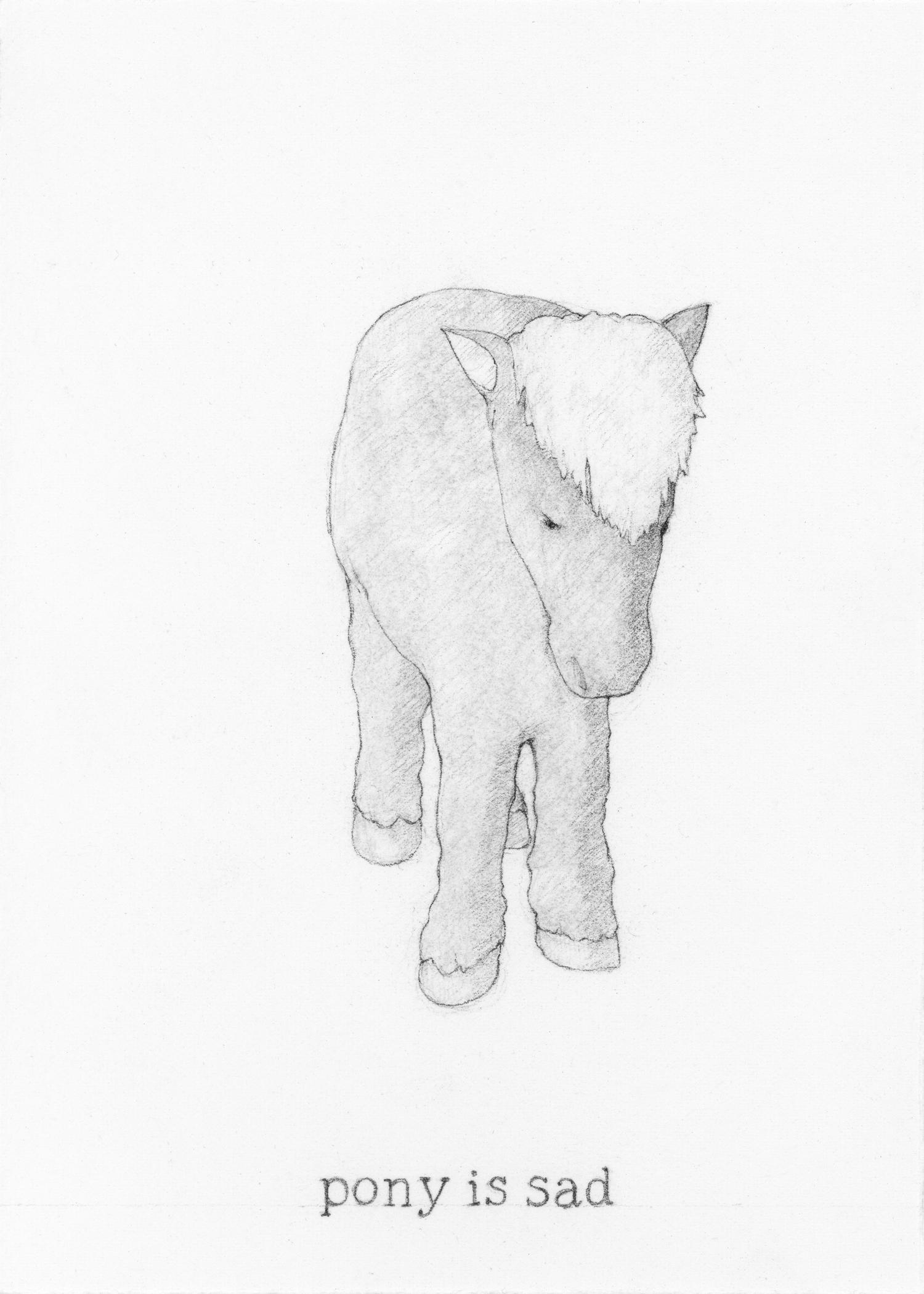 Pony is sad