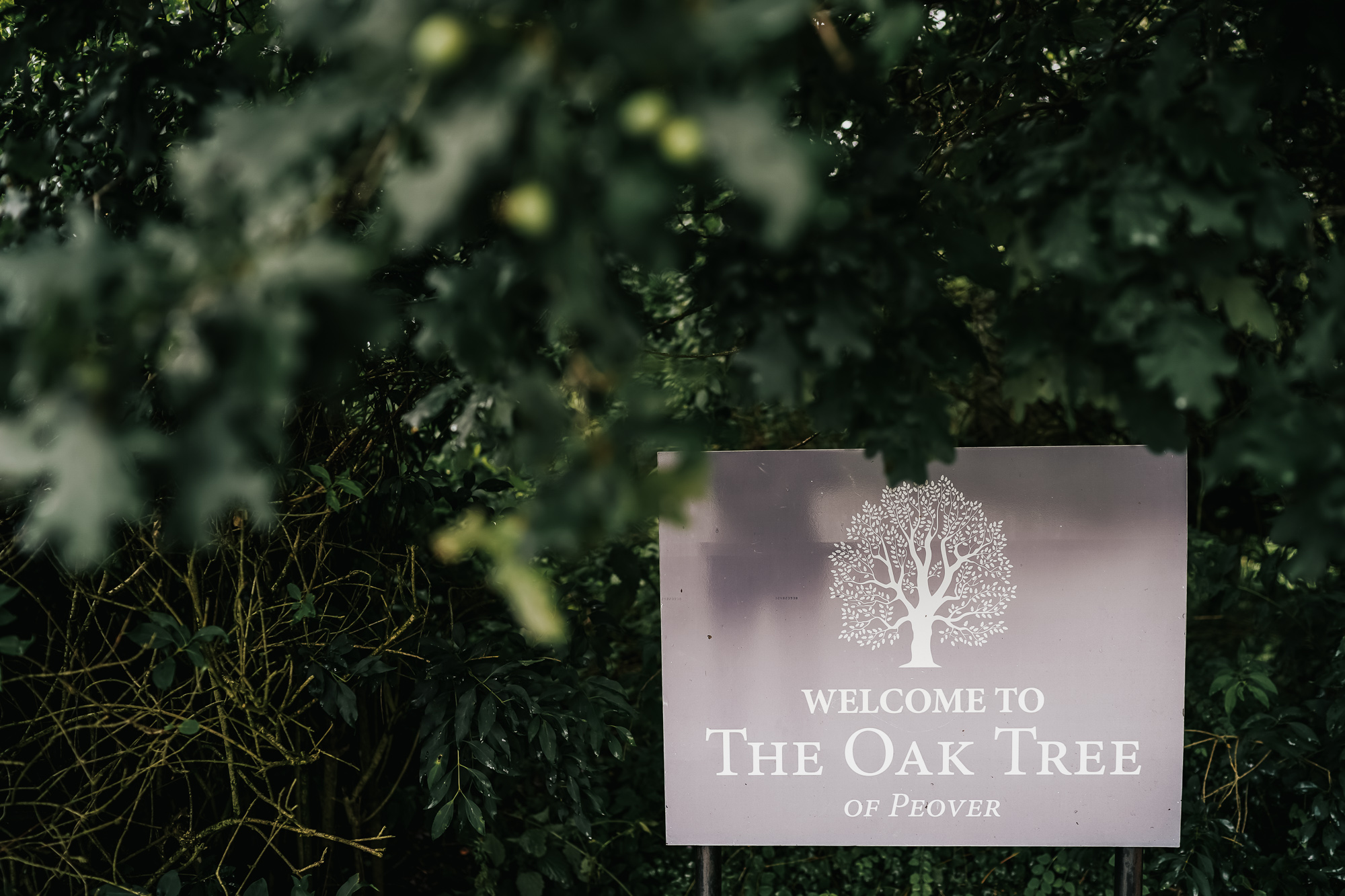 Oak tree of peover wedding photography cheshire wedding photographer (1 of 56).jpg
