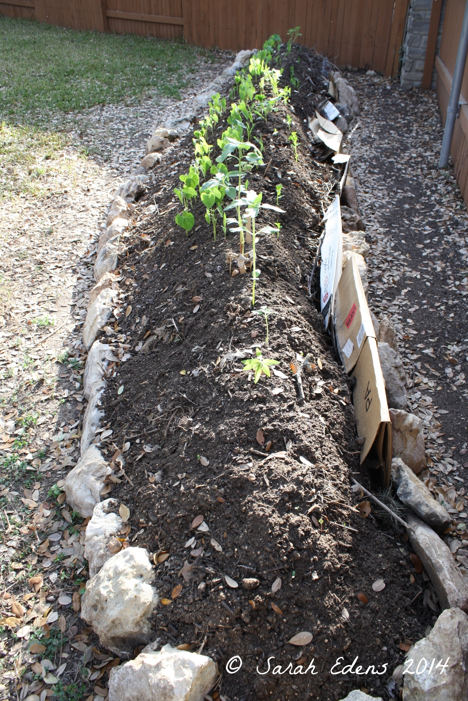 April 2014-bed is built and planted!
