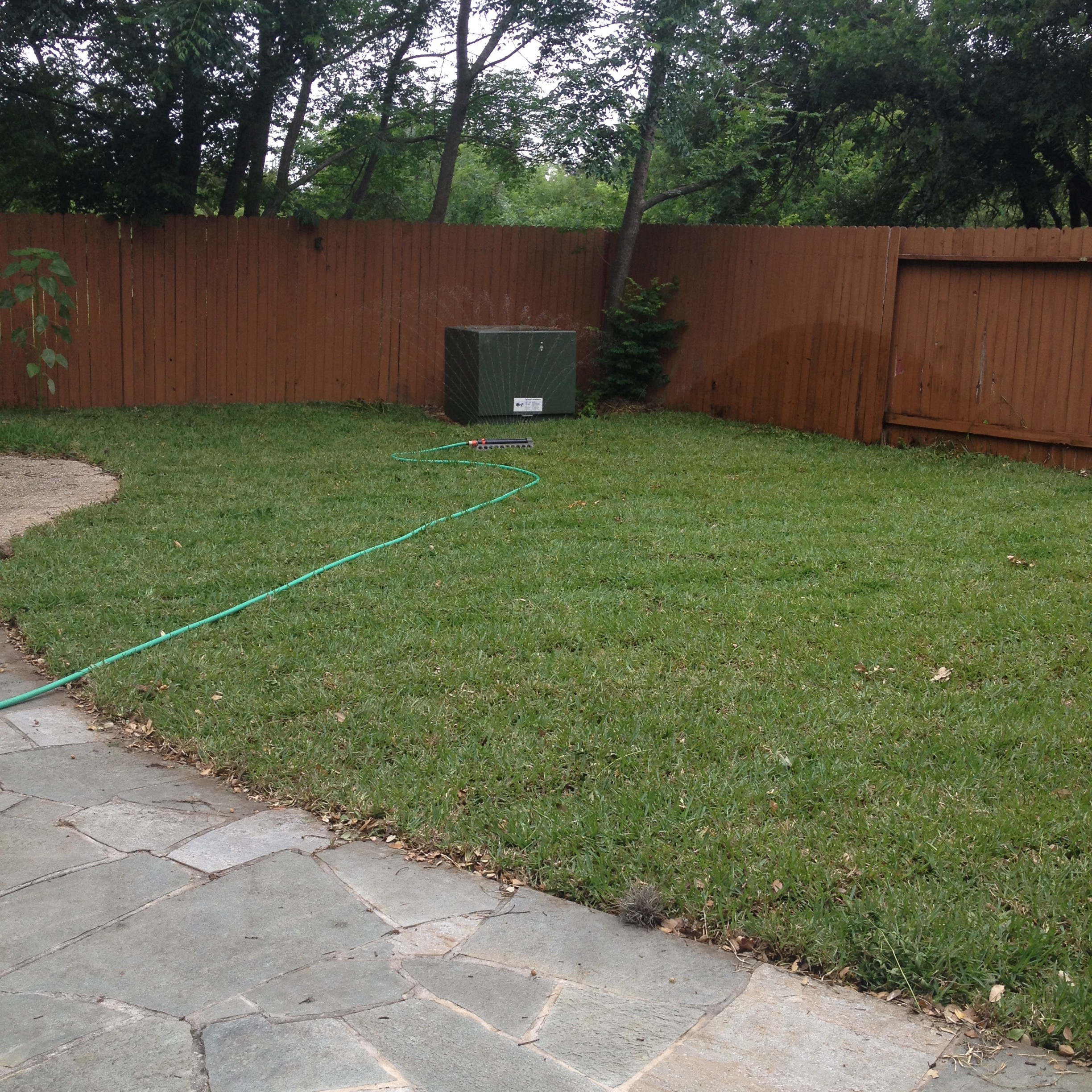And...turf. Back to square one. Shoulda left it that way in the first place.