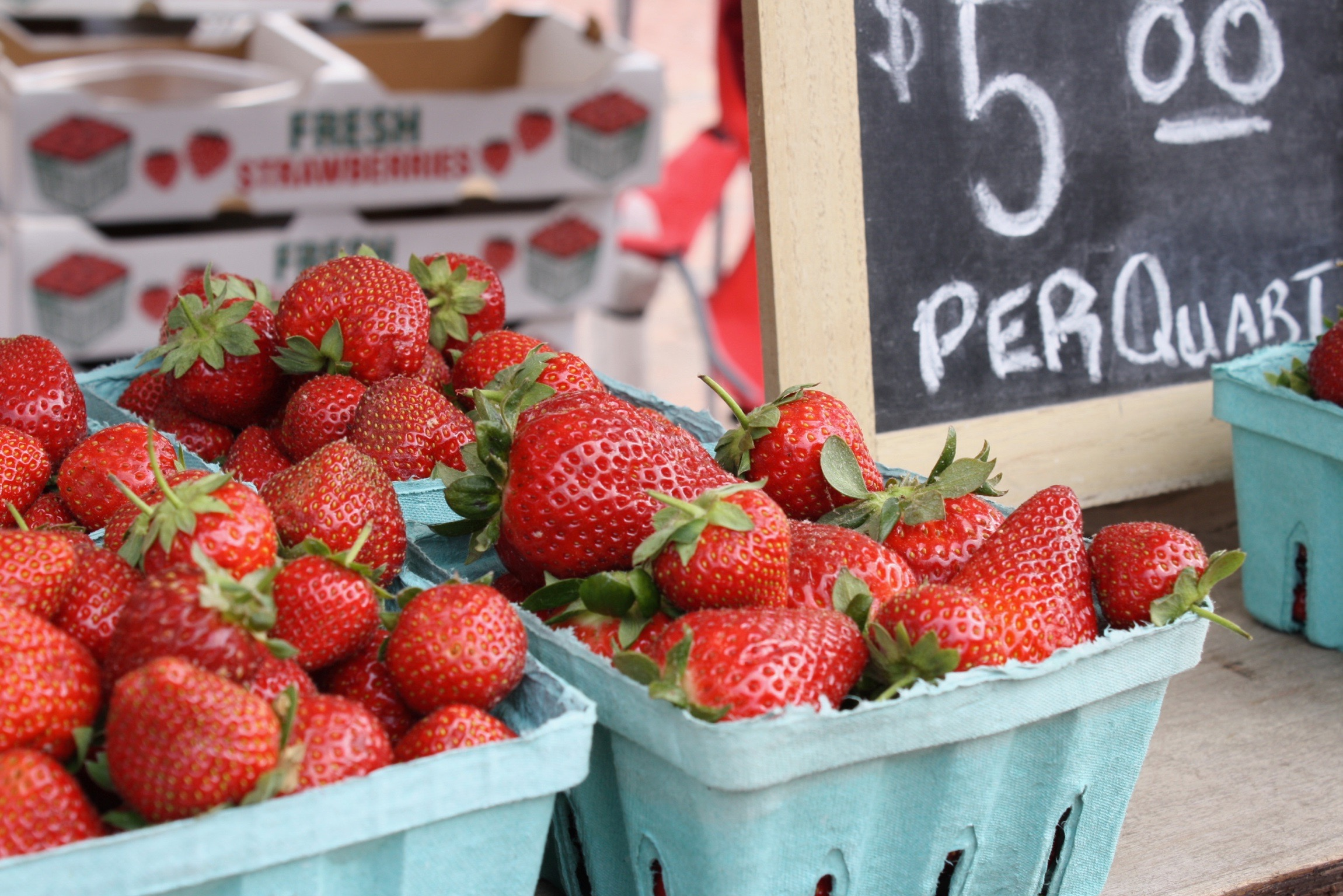 Luscious spring strawberries at the Williamsburg Farmers Market, May 2017