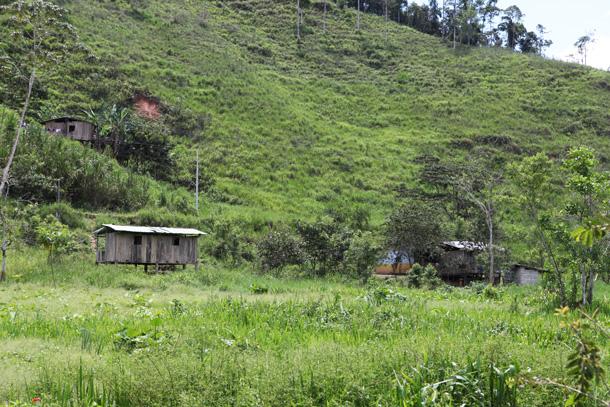 A la derecha, debajo de un árbol y con una franja amarilla, se puede vislumbrar la casa de la familia tendetza