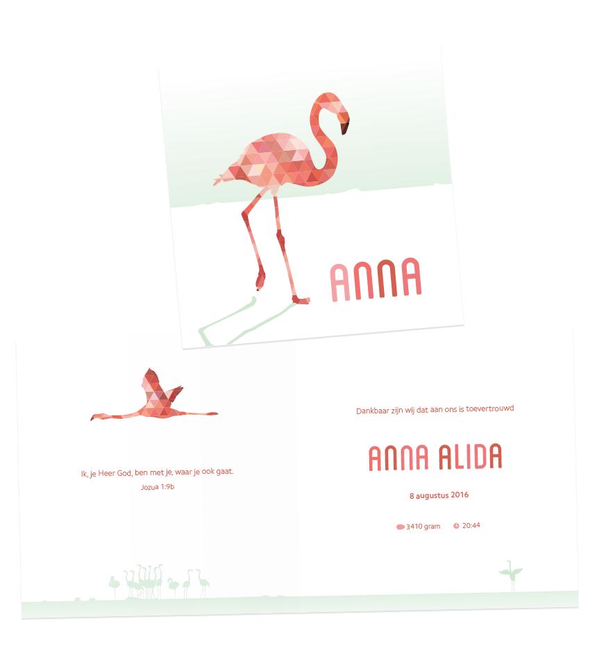 Geboortekaart Anna