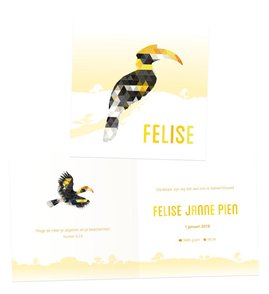 Geboortekaartje Felise