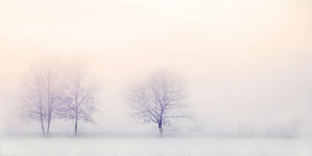 winter-landscape-2571788_640.jpg