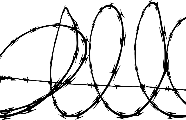 barbed-wire-155797_640.png