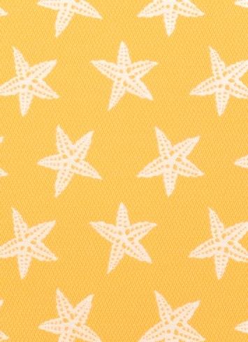 STAR_FIS_885_HD_1.jpg