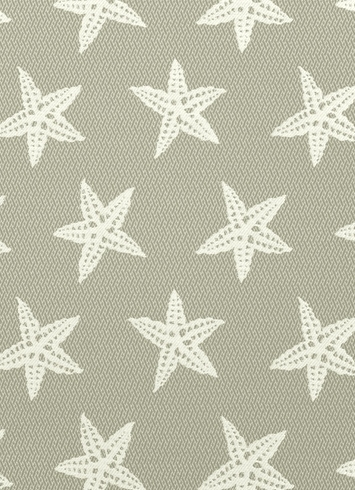 STAR_FIS_91_HD_1.jpg