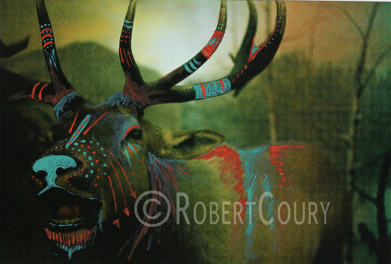 """Redwood Warrior"" (8.5x6.5) Acrylic on Photograph - $125"