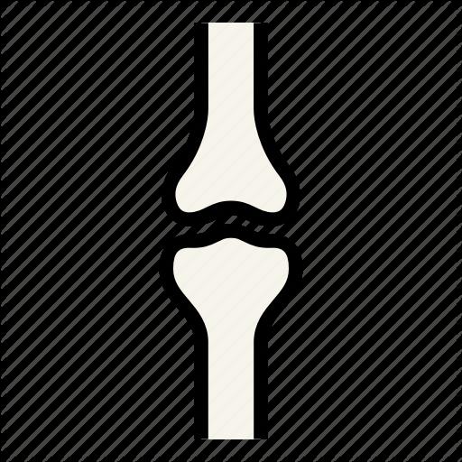 organ-20-512.png