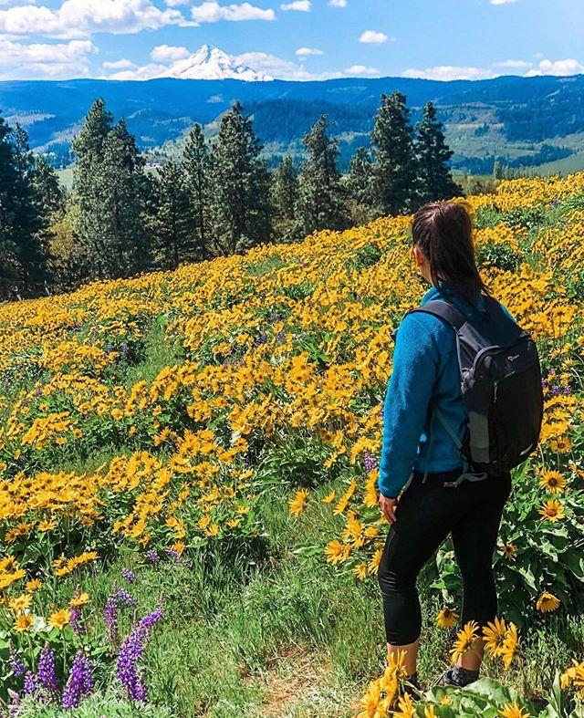 No matter how chaotic life is, wildflowers still bloom. —————————————————- 📷: @chels.nw ——————————————————————— #waterfallwednesday #girlganghikersclub #womenwhoexploreoregon #traveloregon #pnw #pnwdiscovered #womenwhoexploreoregon #pnwonderland #oregonexplored #sheexplores #conqueroregon #theNWadventure #herpnwlife #likeamountaingirl  #wildernessbabes #mountaingirls #radgirlslife #girlsborntotravel #nwc #womeninthewild #womenempowerment #outdoorphotography #instagram