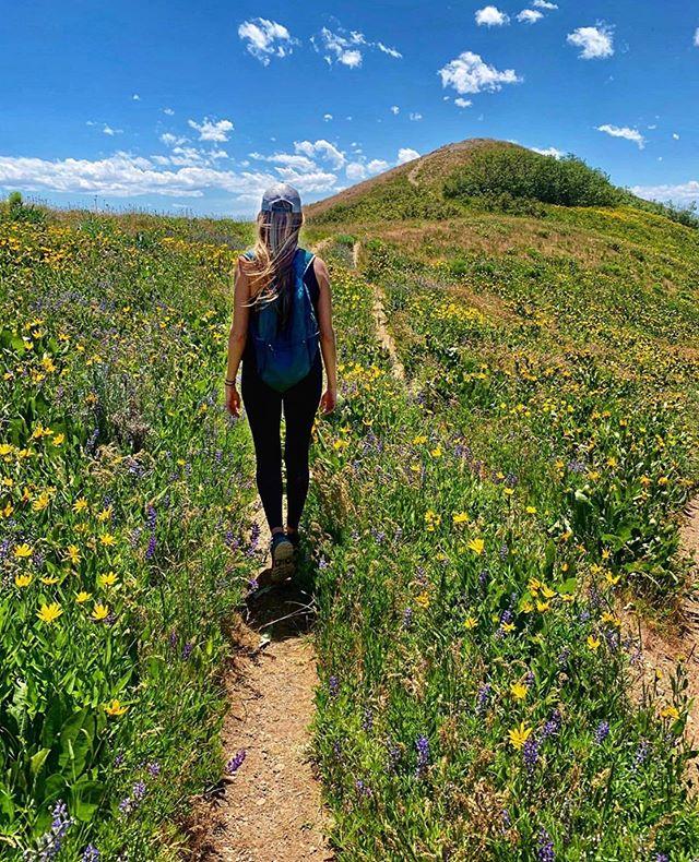 You have so much light, plants grow towards you. ☀️🌼🌸🌻——————————————————————— 📸: @alexzandra711 —————————---------———————-————— #womenwhoexplore #sheexplores #likeamountaingirl  #wildernessbabes #mountaingirls #radgirlslife #girlsborntotravel #nwc #womeninthewild #womenempowerment #outdoorphotography #instagram #womenwhohike #yesvisitutah #utahisrad #werutahgirls #werutah #utahmountains #girlganghikersclub