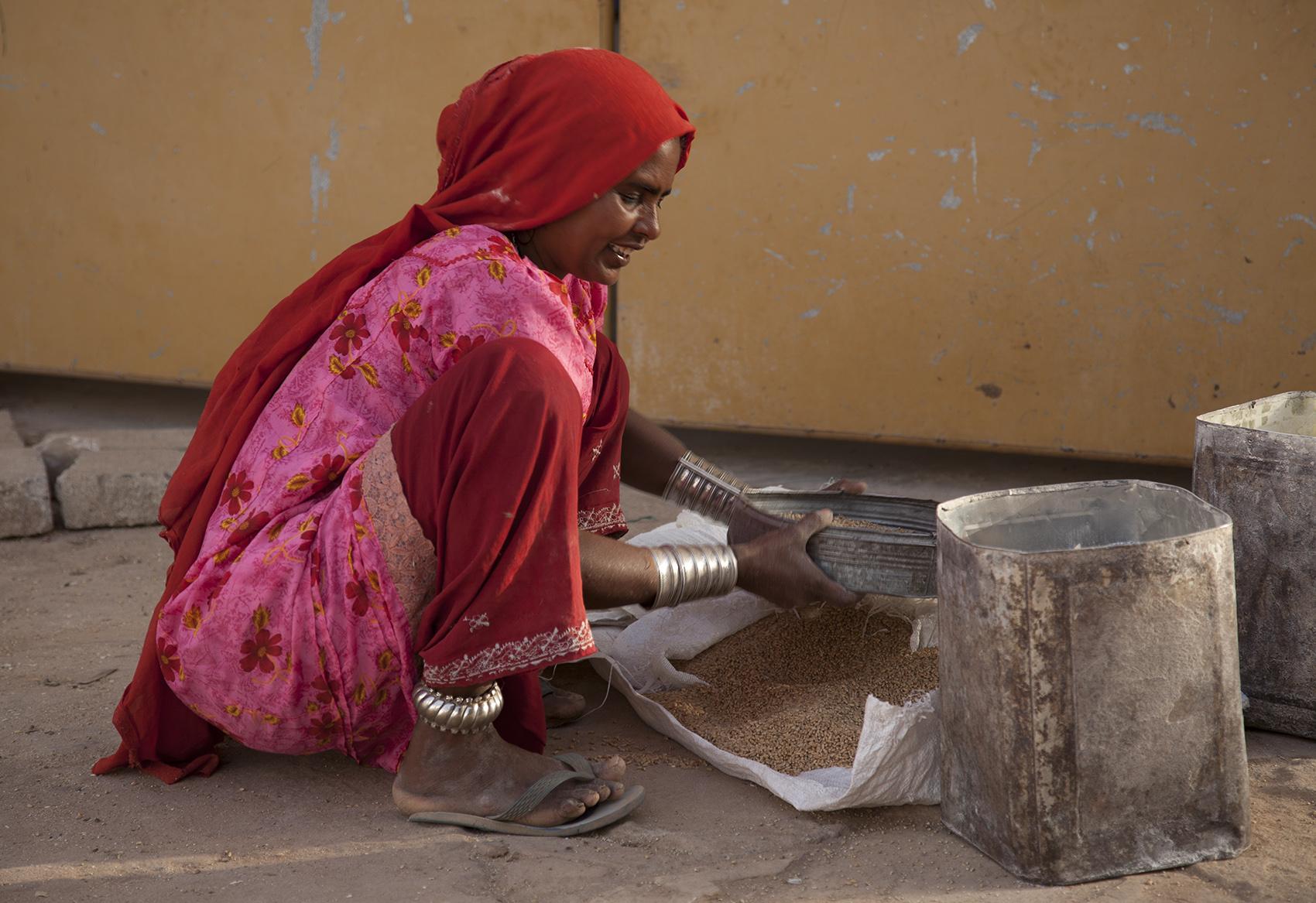 Sifting grain, Bhujodi, India