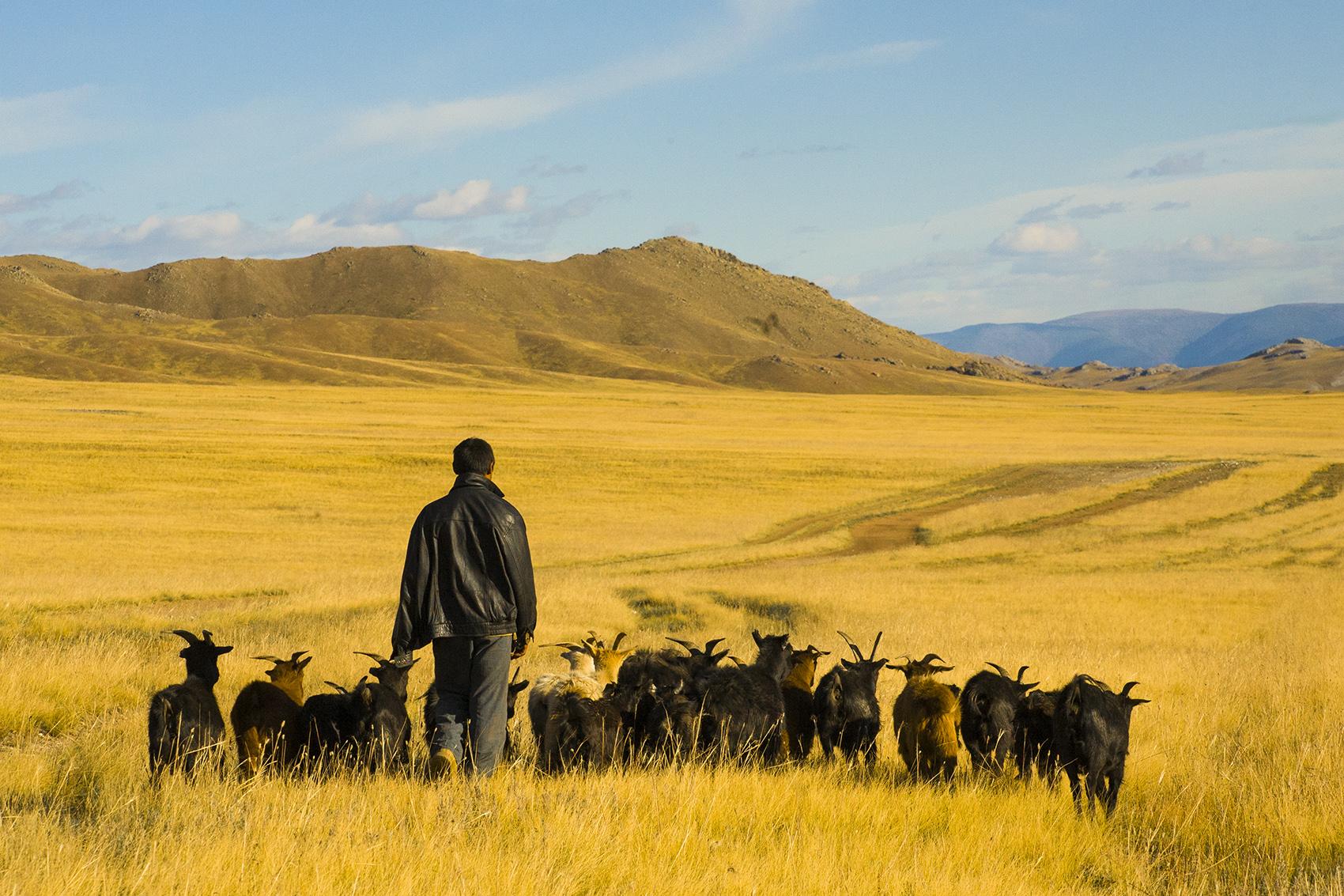 Northern Mongolia