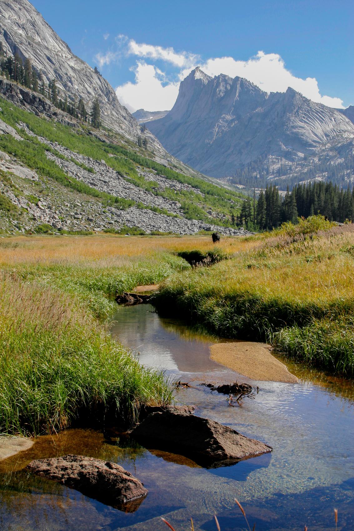 Copper Creek, Sequoia National Park