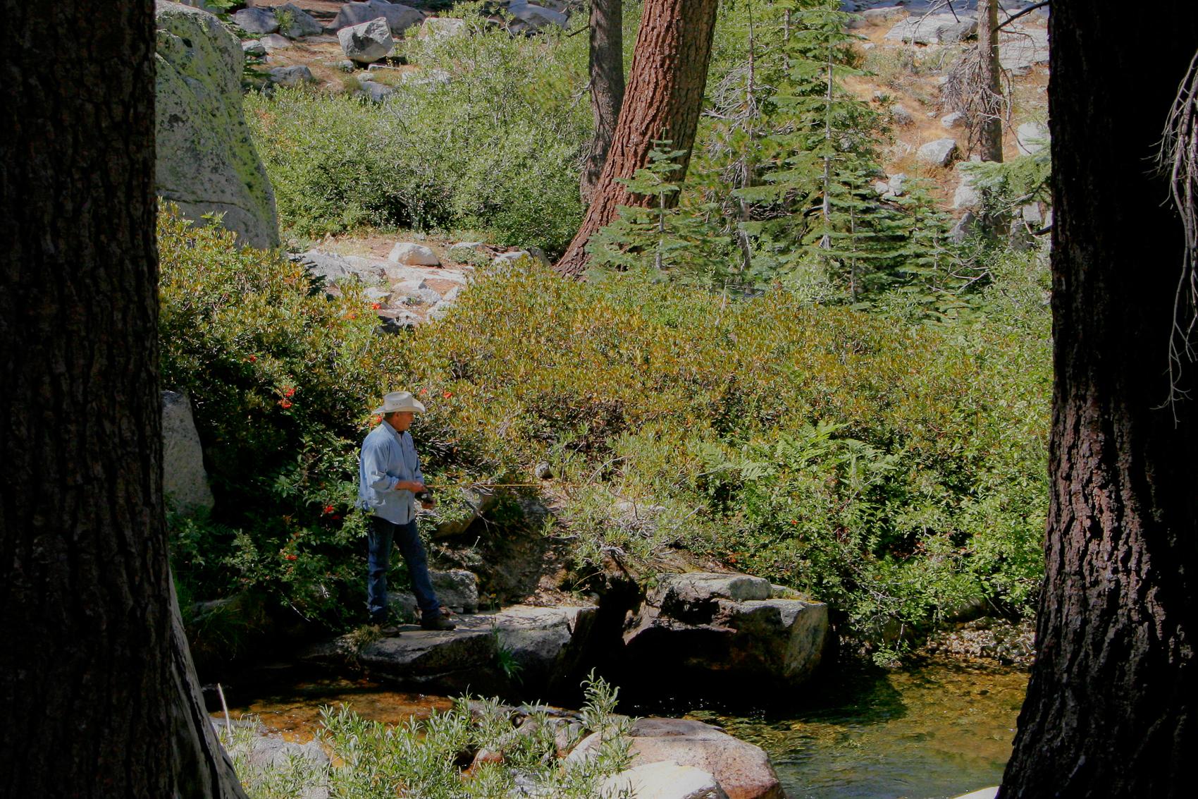 Tamarack Creek, Sequoia National Park