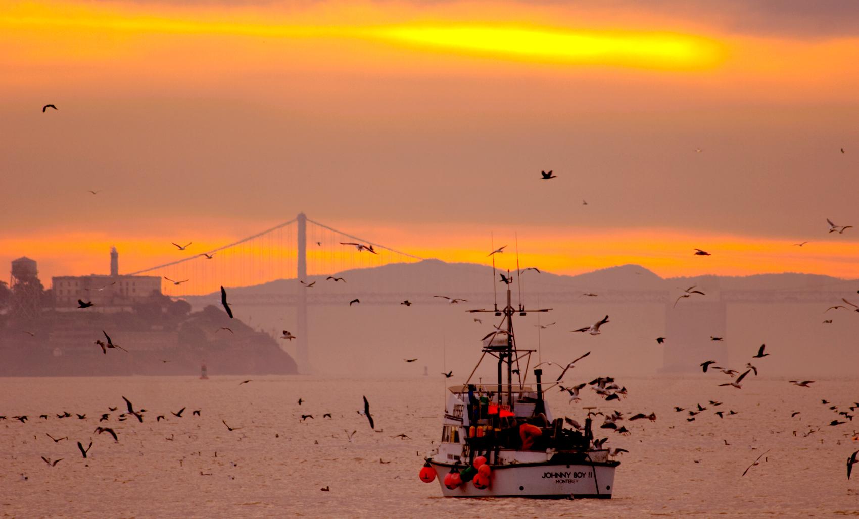 Herringboats, San Francisco Bay