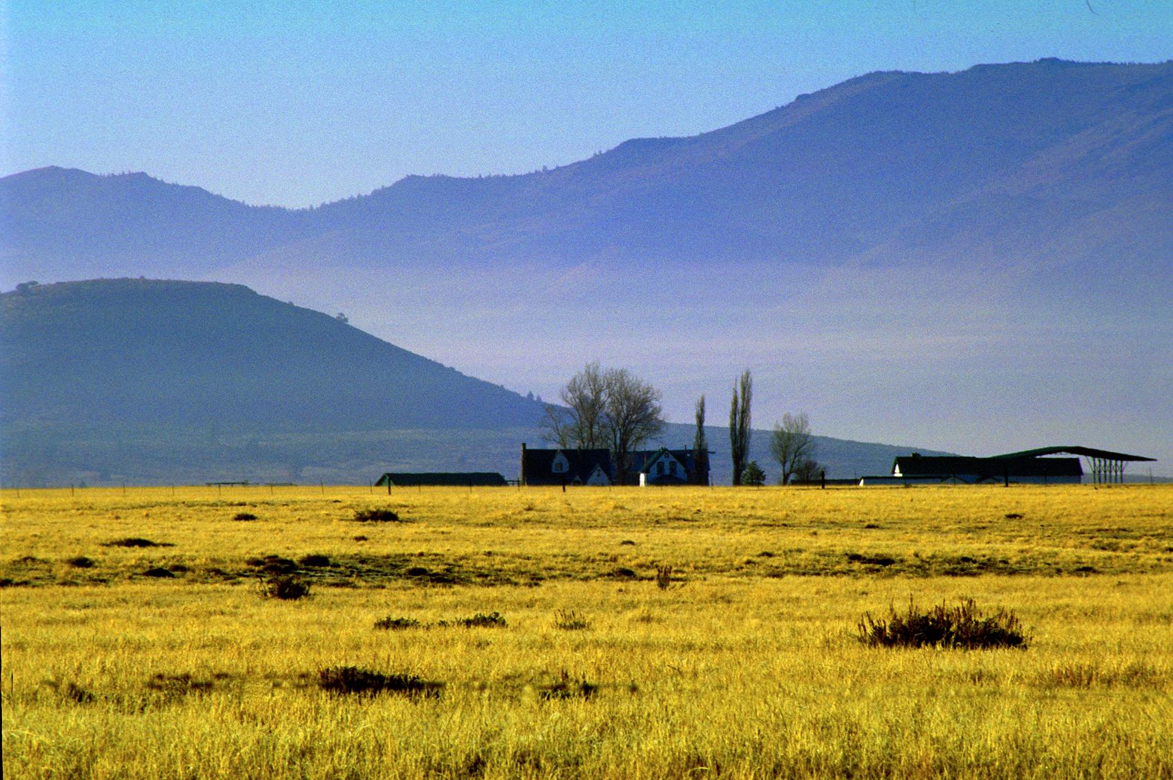 Winter morning, Sierra Valley