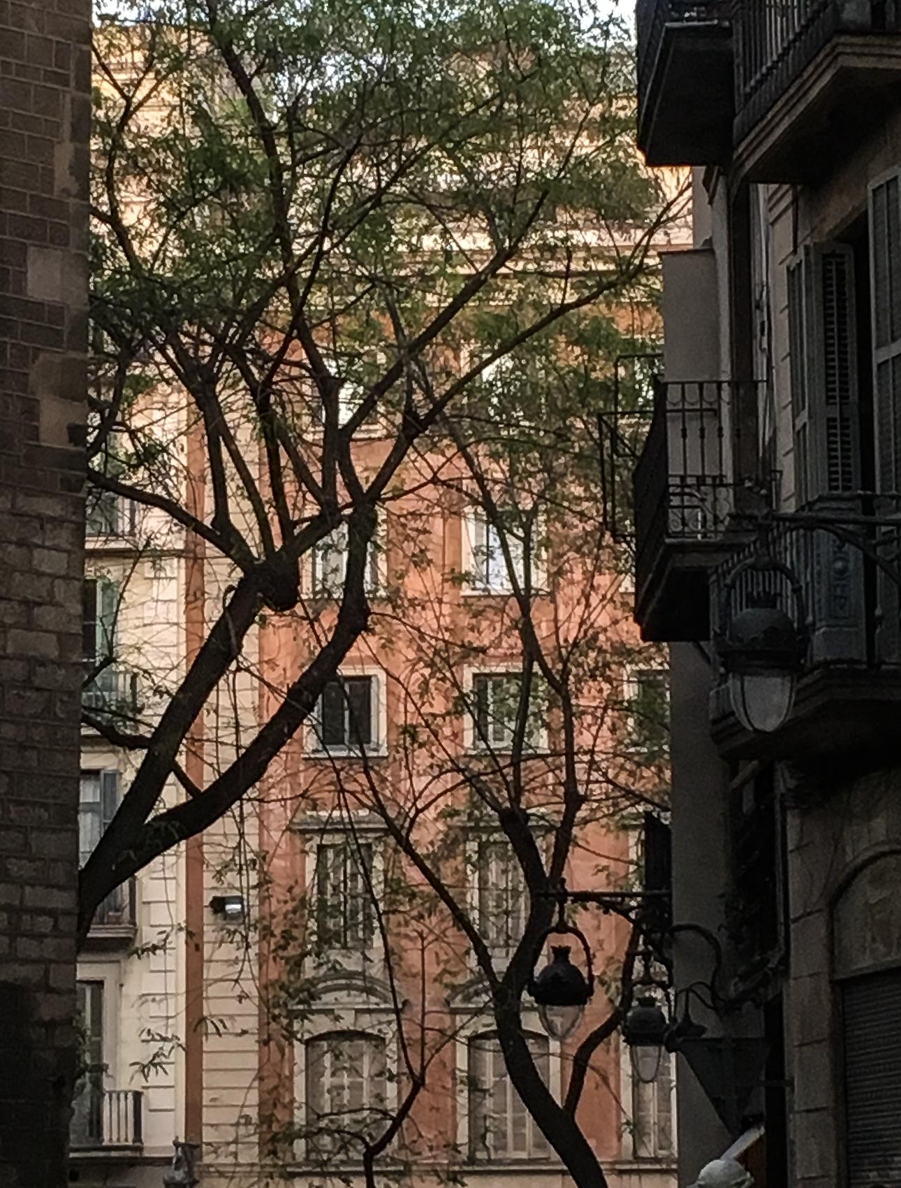 Street in Born