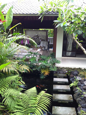 GEOFFREY and MICHAEL's UBUD HOUSE    Not too bad for $60,000, including the land?