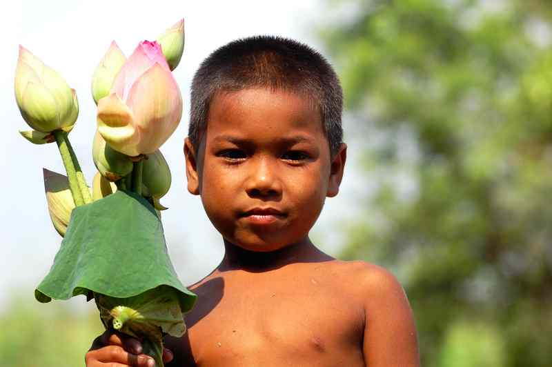 Cambodian kid selling lotus flowers