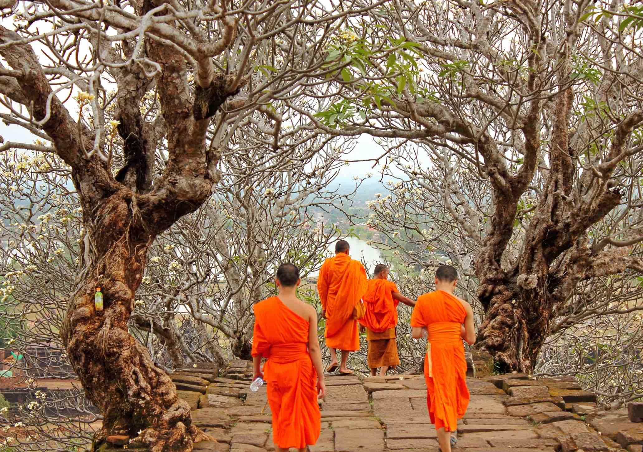 Monks in orange robes visitingWat Phu temple