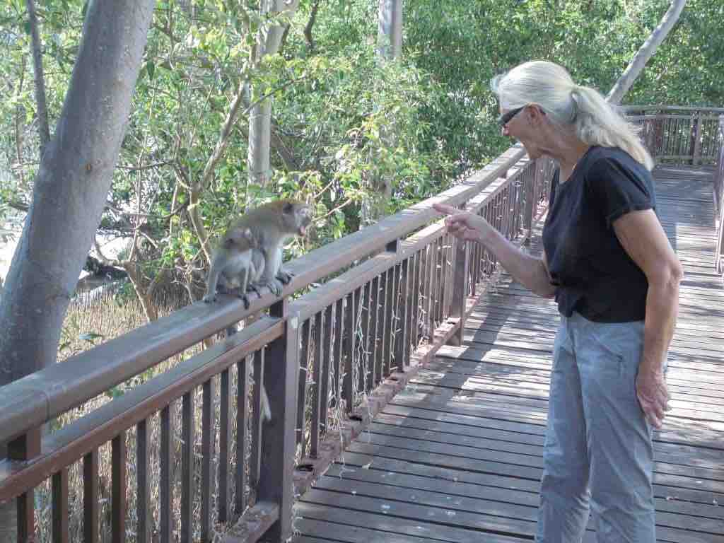 Erica warning the Macaques