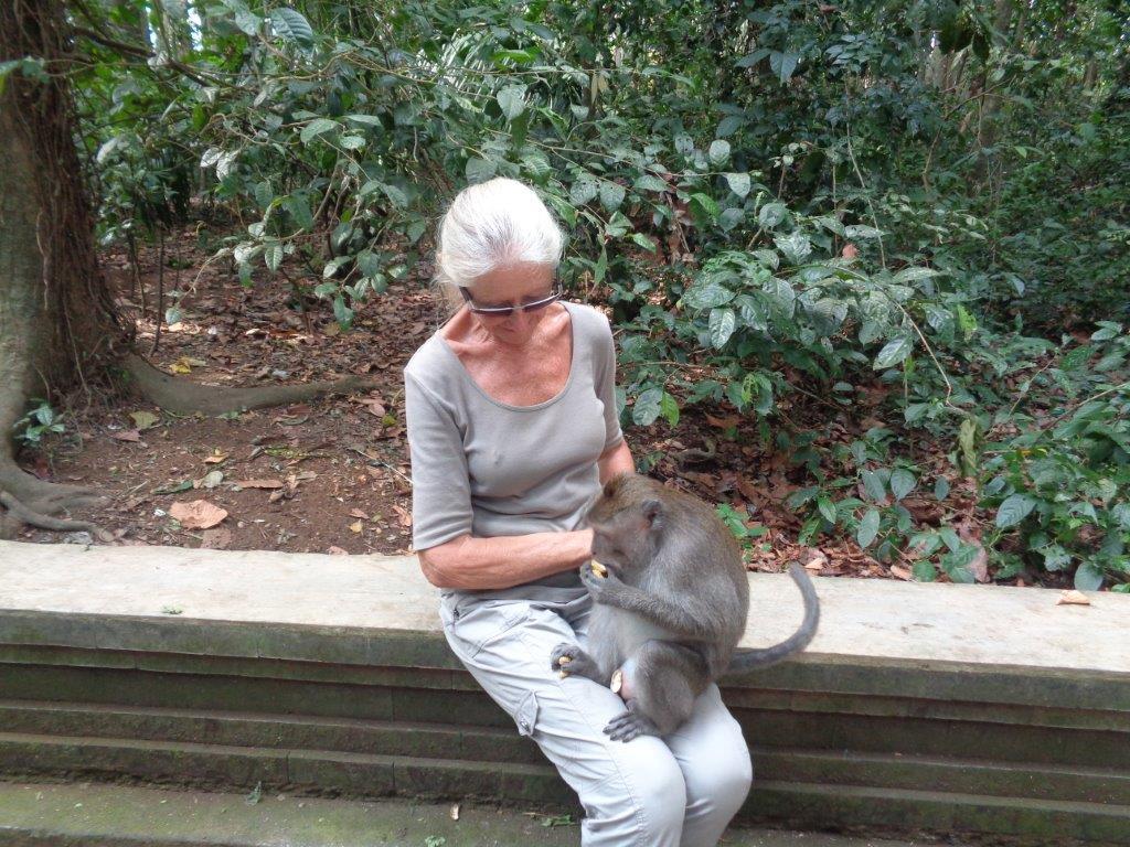 Another Monkey Friend.jpg