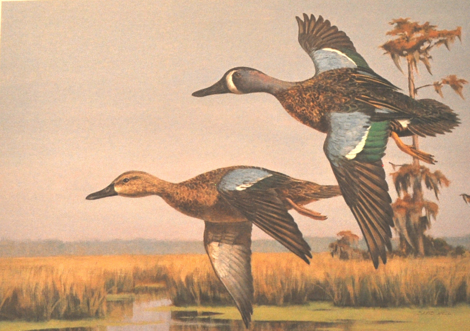 David Noll, 1989 Louisiana Waterfowl Conservation Stamp