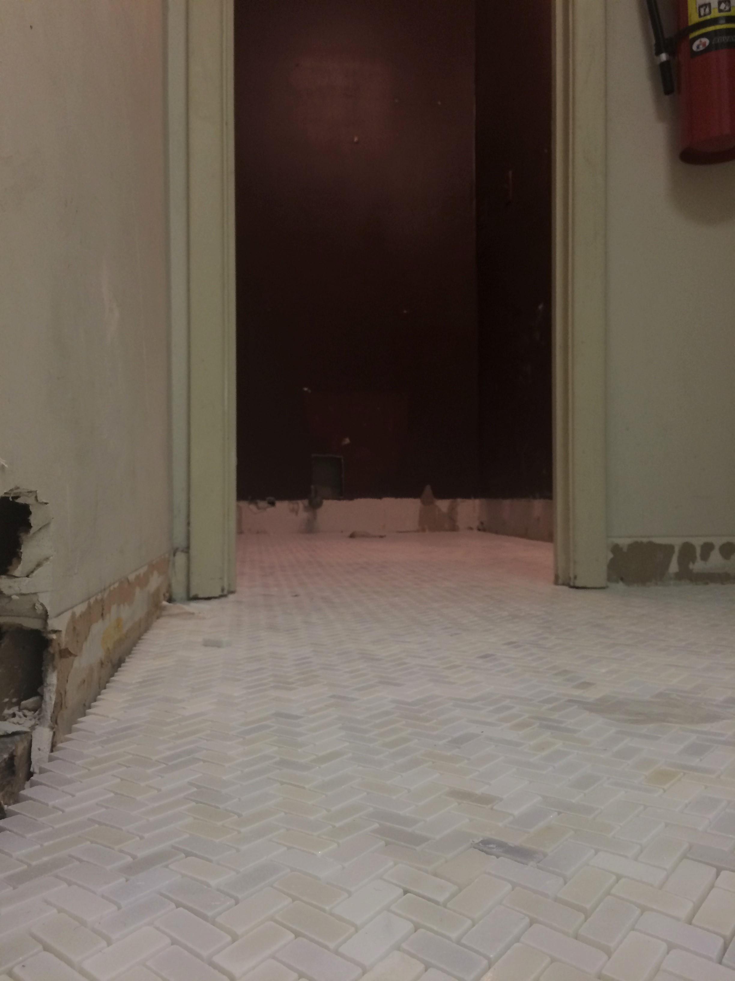 fancy bathroom floor!