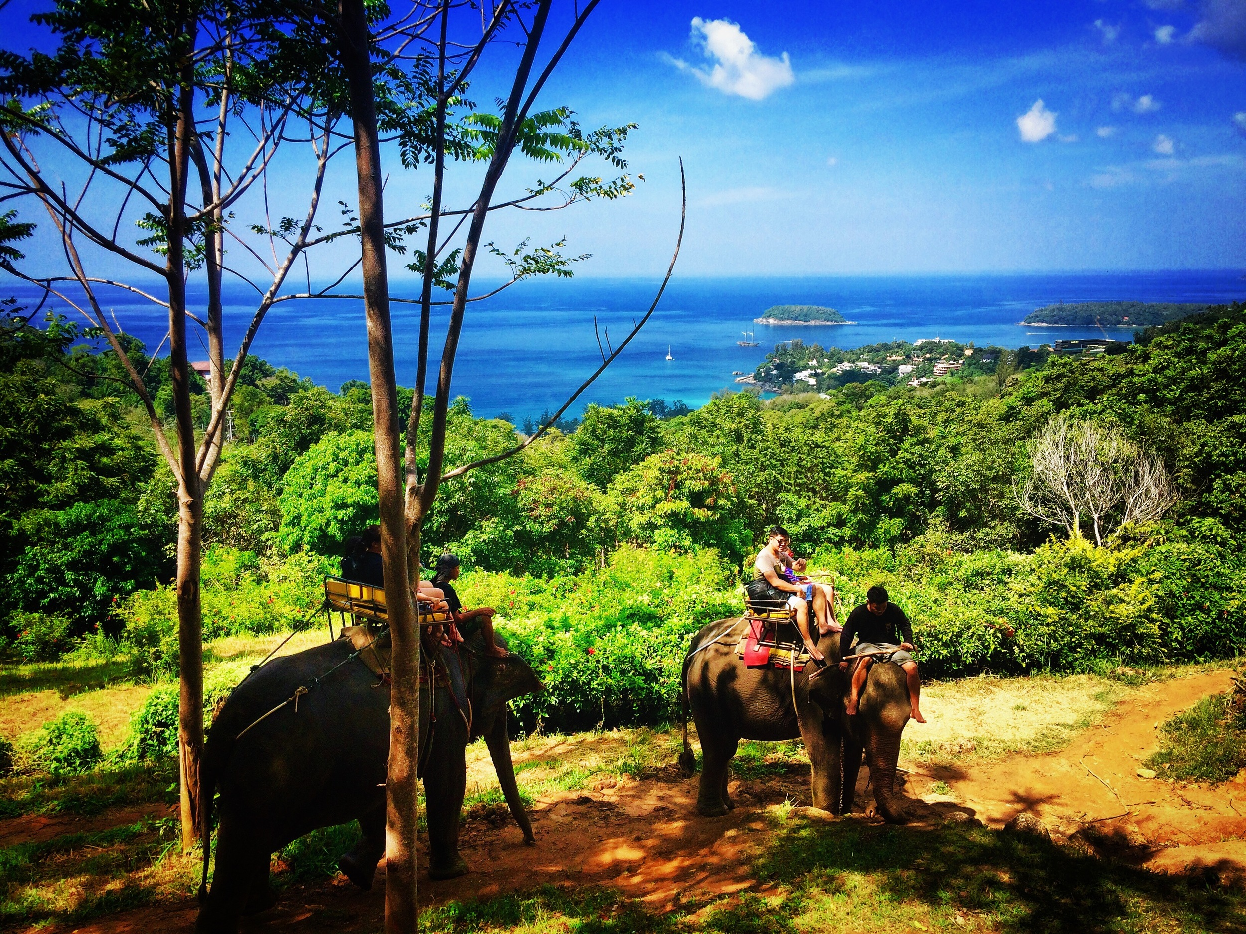 Kok Chang Elephant Trekking, Phuket (Scott's photo)