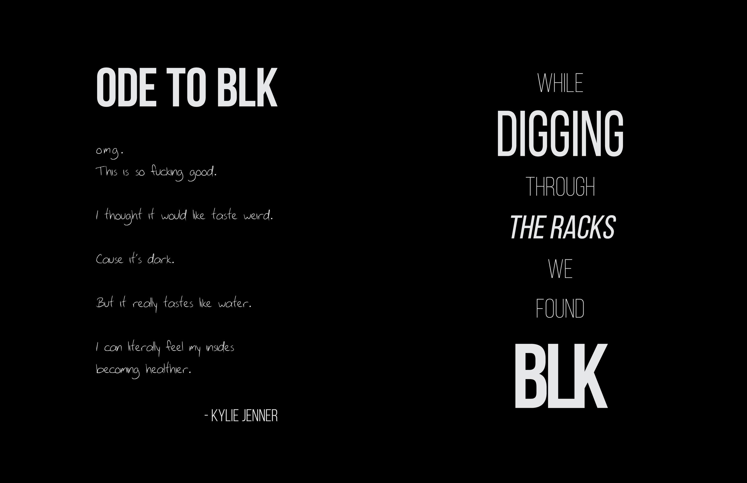 Blk Brand Book10.jpg