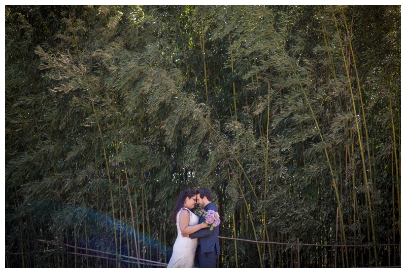 The bamboo at Grounds for Sculpture makes the perfect backdrop for wedding photos.