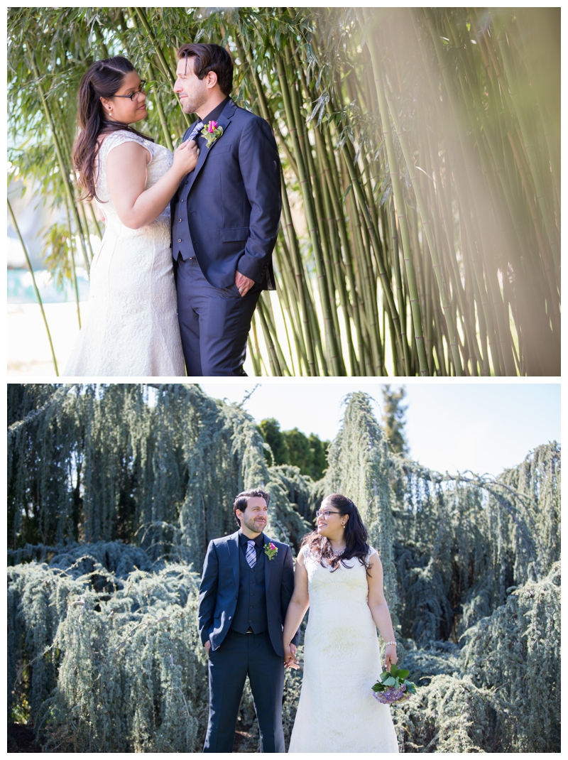 Gotta love more bamboo and my all-time favorite tree at Grounds for Sculpture- I'm not a tree expert by any means, but I love a good weeping tree- makes for gorgeous backdrops for wedding and engagement photographs.