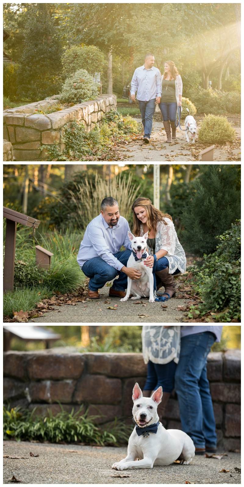 medford-lakes-nj-engagement-cathedral-in-the-woods-2