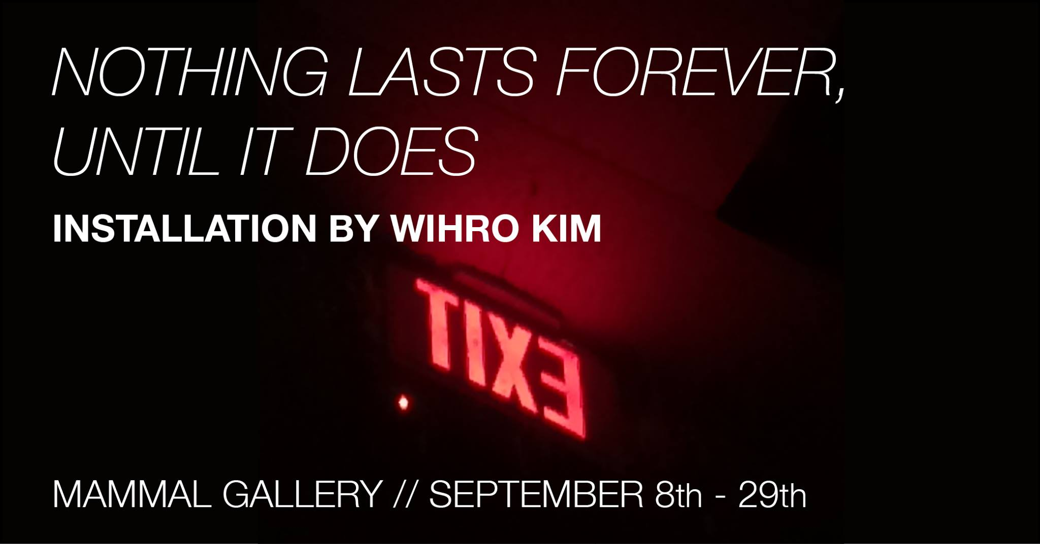 Wihro Kim opens Nothing Lasts Forever, Until It Does at Mammal Gallery.
