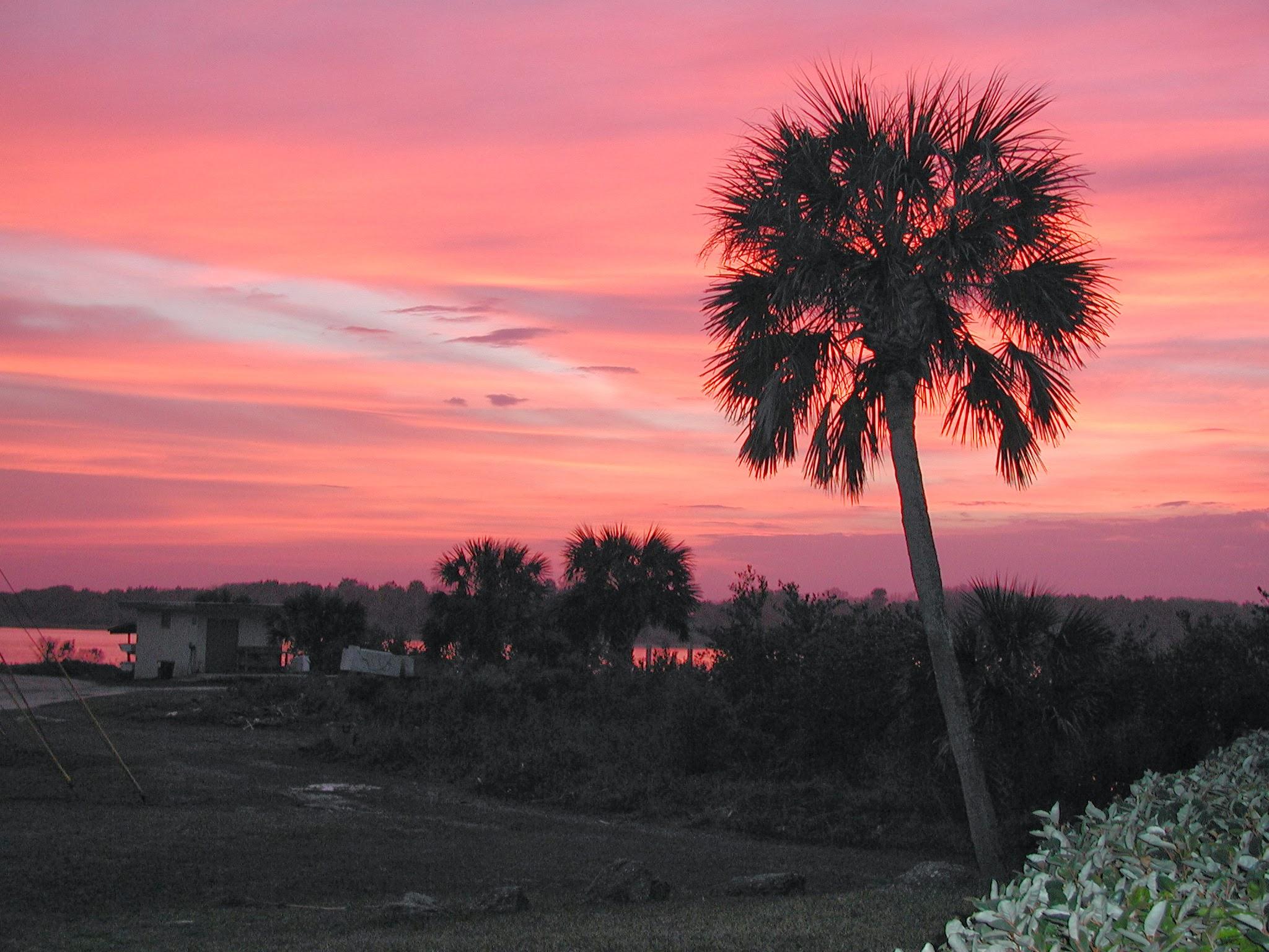 Sunset in The Hammock.JPG