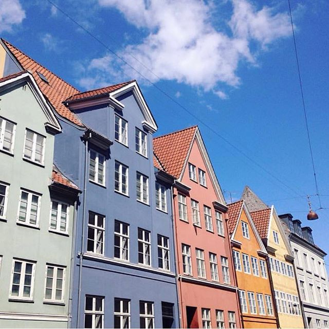I'm gone the first two weeks of June and need someone to watch my dog. Any takers? The top two floors of that pretty blue one are mine! #copenhagen