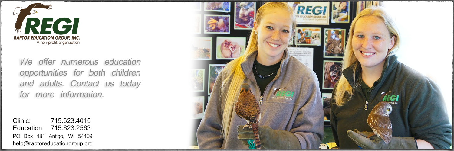 Raptor Education Group Inc Personalized Education Opportunities.jpg