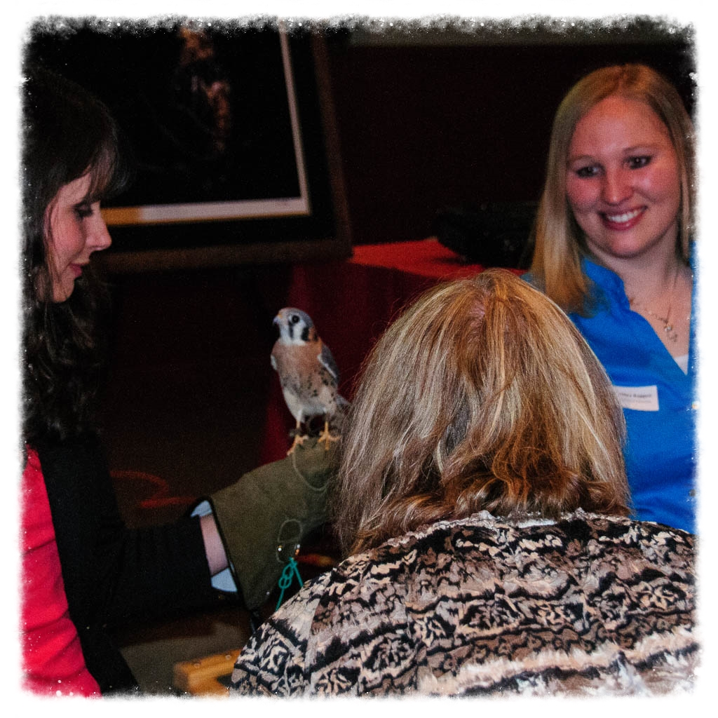 Raptor Education Group Inc also offers adult education programs