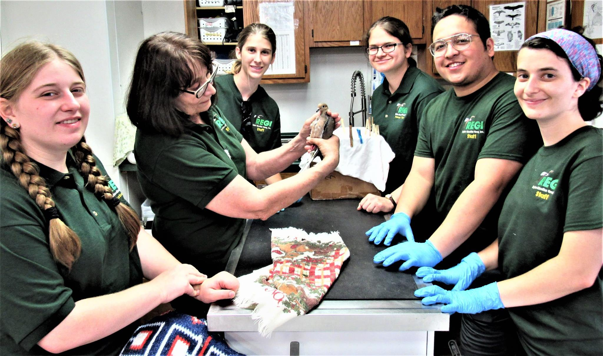 Interns learn about many species from bald eagle to mourning doves.