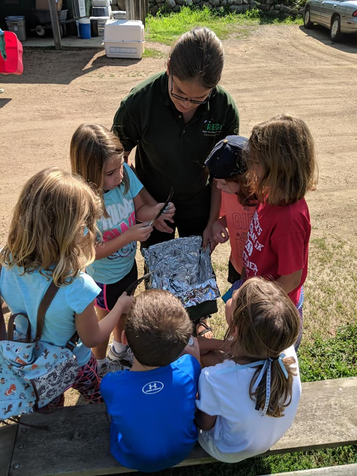 Campers got to see why turkey vultures have those nice black feathers as well as how the sun keeps them warm and comfortable. Children took a feather out of a solar oven (a cardboard box with tin-foil) to see just how warm their feathers become! — with Regina Lobner .