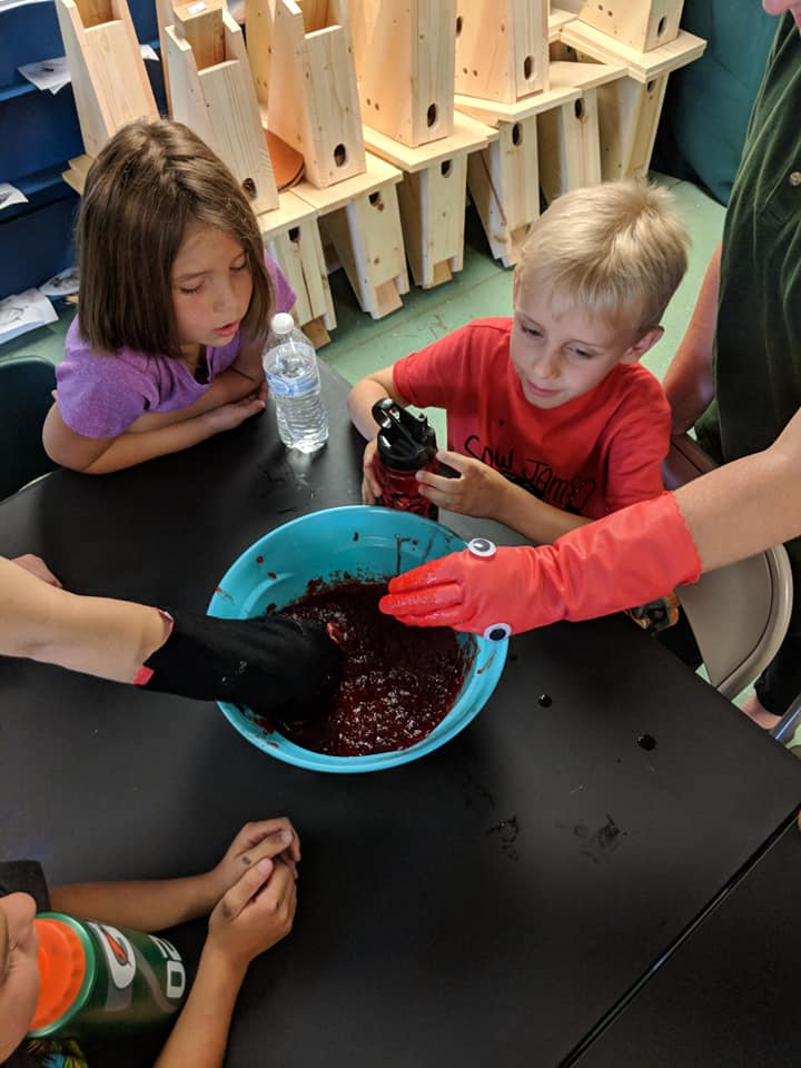 Campers watched as two staff members stuck their gloved hands (turkey vultures heads - one represent a turkey vulture, just a glove, and one any other animal with fur, felt around the glove) into jello (decaying meat - what vultures eat). Children got to see the benefits to having a bald head - NO MEAT WILL STICK YOU YOU!