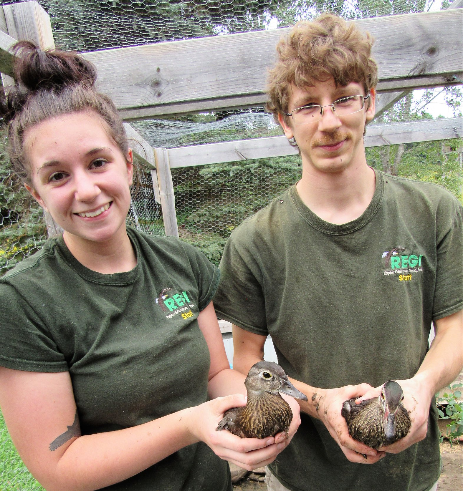 Katie Helland and Greg Russ, with two of the Wood ducks on their way to release.