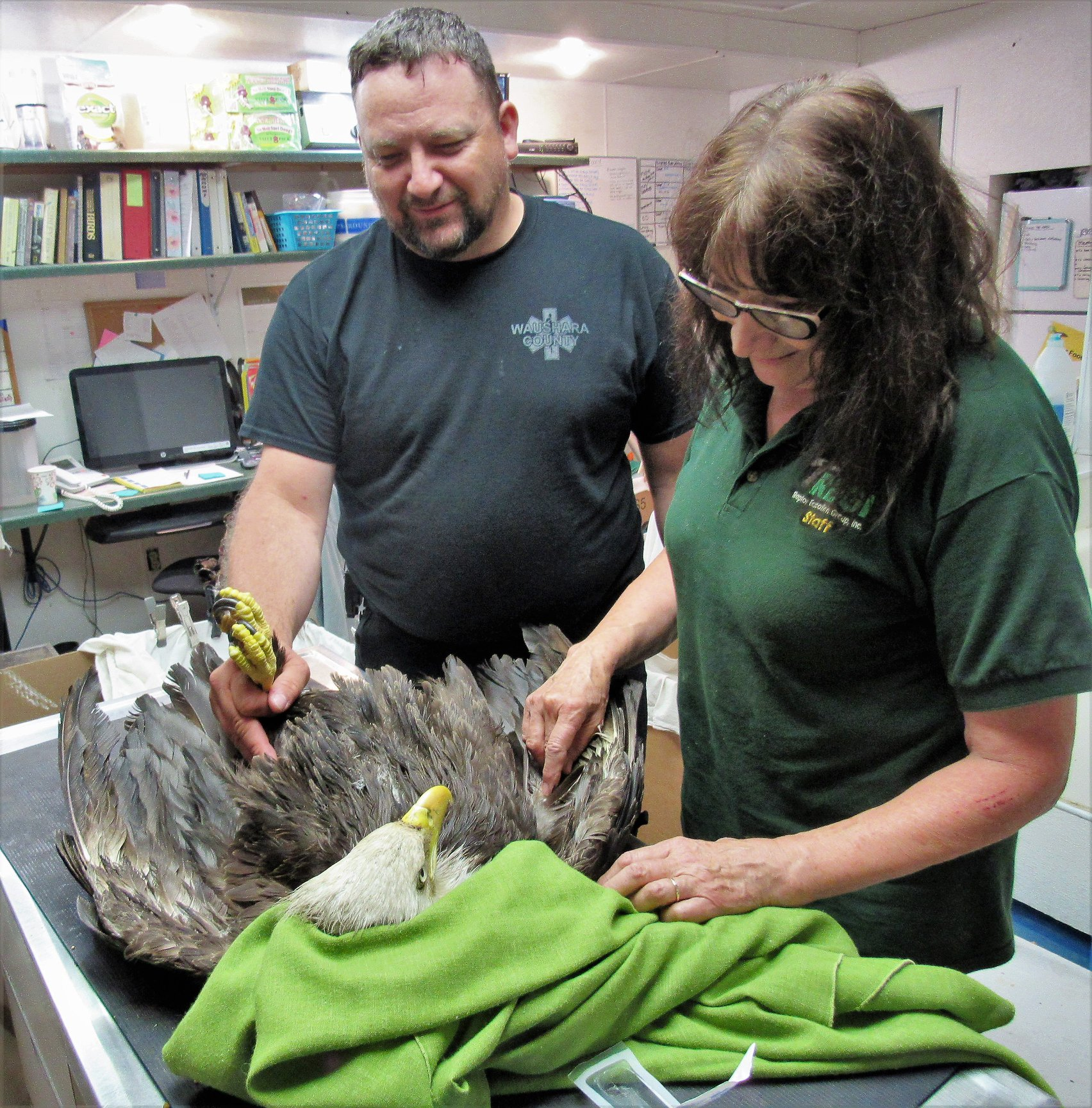 Dan Miller delivered the Bald eagle to the REGI clinic and helped hold the bird so I could examine him.